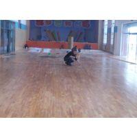 天津篮球塑胶地板_篮球运动地板