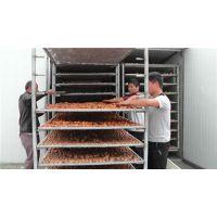 小型核桃烘干机|红河核桃烘干|福瑞斯永淦节能环保设备