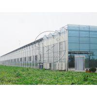 青州瀚洋温室大棚建造——玻璃/阳光板温室、塑料薄膜大棚
