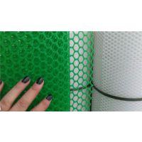 养鸡塑料床网生产厂家联系:15131879580