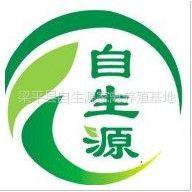 梁平县自生源家禽养殖基地