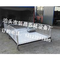 猪场饲喂小猪必备保育床专业定做小猪生活栏厂家河北弘昌