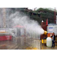 供应武汉建筑工地降尘喷雾机厂家 净之洁环保