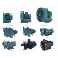AT750爱克铸铁水泵,游泳池水处理循环设备,标准泳池儿童泳池别墅泳池过滤系统设备