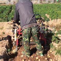 四川佳宸新型牵引式薯类收获机厂家直销 自动挖洋芋机器加工定制 土豆地瓜挖掘机