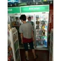 冷柜双开门 雅绅宝展示柜冰箱 SA10L2F饮料展示柜