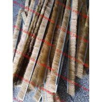 厂家批发不锈钢丝条刷 清洗除尘条刷 抛光除锈钢丝毛刷条 不锈钢丝条形刷