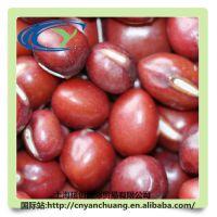 厂家有机红豆 红小豆东北产地批发 豆类杂粮 珍珠红 抛光红小豆