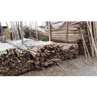 竹子北京哪里卖竹竿批发价格