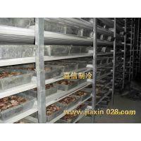 内江冷库造价 内江冷库咨询:13881955535、保鲜库设计安装、比泽尔冷藏库安装、低温冷冻机
