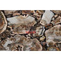 granite petrified wood stone slab countertops