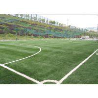 重庆足球场人工草坪GC-0211单丝型草坪,草长20-50mm,草坪耐用时间长达8年