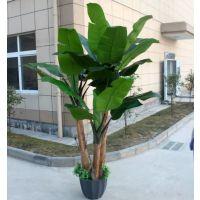广州仿真植物厂家 广州哪里有仿真芭蕉树卖 假香蕉树pu盆栽厂家直销