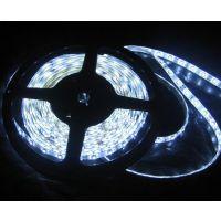 LED灯条厂家供应LED软灯条 3528贴片滴胶防水12V