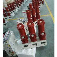 供应VS1 侧装式VS1-12户内固封高压真空断路器