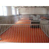 母猪产床用处及介绍 母猪产床价格及批发 母猪产床规格2.1*3.6