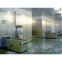 鸿宇公司HYH500SD食品速冻机适用于海产品速冻