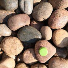山东变压器鹅卵石供应商,永顺5-8 8-12 12-20厘米 卵石