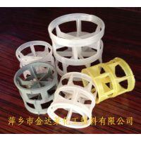 供应塑料鲍尔环填料 鲍尔环填料参数 水洗塔用塑料填料 厂商萍乡市金达莱化工