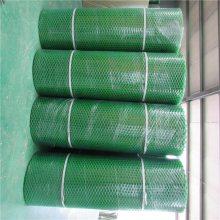 养鸡塑料平网 平格塑料网带 养鸡网使用方法