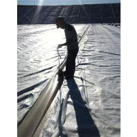 排水板焊接|江门排水板|车库顶板排水板