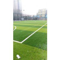小型足球场建造-笼式足球场围网-青岛奥润佳