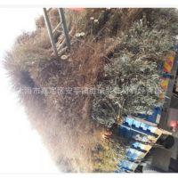大量价销售批发天然竹扫把环卫扫把毛竹扫把庭院场地工地扫把
