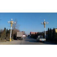 光谷新能源GG-ld-041保定美丽农村太阳能路灯保定太阳能路灯道路照明