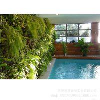 2014热卖 高仿真人造植物墙 仿热带雨林植物墙  厂家直销