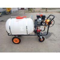 园林汽油喷雾机 富兴自走式手推式喷雾器
