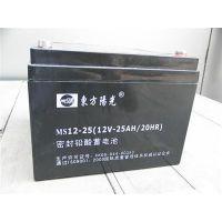 东方阳光铅酸电池