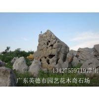供应直销太湖石 天然石 园林石