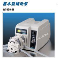 WT600-2J兰格蠕动泵可配置多泵头