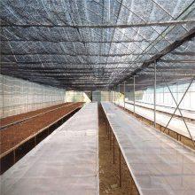 塑料脚踩网 塑料平网 养殖白网