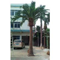 新雯企石热销室外景观园林仿真海枣树人造热带雨林植物假树
