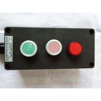 供应二钮一灯三防控制按钮开关FZA-A2D1主令控制器WF2