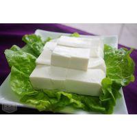 豆制品加工设备 宏运来豆腐机成功致富好机器