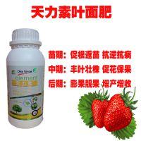 种草莓用啥叶面肥 什么让草莓提早上市 草莓专用膨大增甜叶面肥