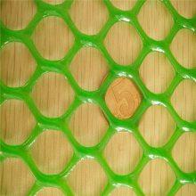 塑料平网 养殖塑料网 水产平网