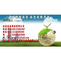 北京京晶供应细胞程控降温仪 型号:BYK-98