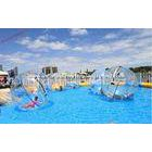Big Inflatable Water Walking Ball Life Sized Hamster Ball Pool Toy For Water Park