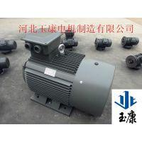 玉康机械三相异步电动机Y315M-6级132kw厂家直销