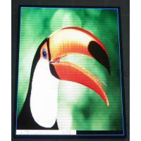 北京凯卓科技LED室内电子显示屏 (QC0001)