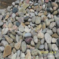 河鹅卵石批发--多规格天然鹅卵石,机制鹅卵石