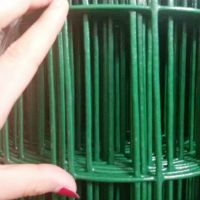 果林围场荷兰网 种植园铁丝浸塑荷兰网 圈地防护荷兰网