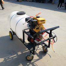 宏兴牌手推喷雾器 高压喷雾器 手推打药机型号