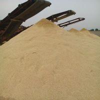 天然海砂滤料 0.5-1mm 各种规格 量大优惠