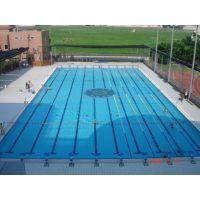 福建标准游泳池设备销售及设计安装,定制各种非标游泳池工程,厦门净文水处理