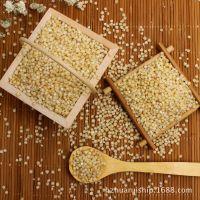 绿色健康五谷杂粮高粱米 营养早餐无污染东北有机高粱米