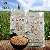 金谷斯田燕麦米 有机燕麦米500g 厂家直销